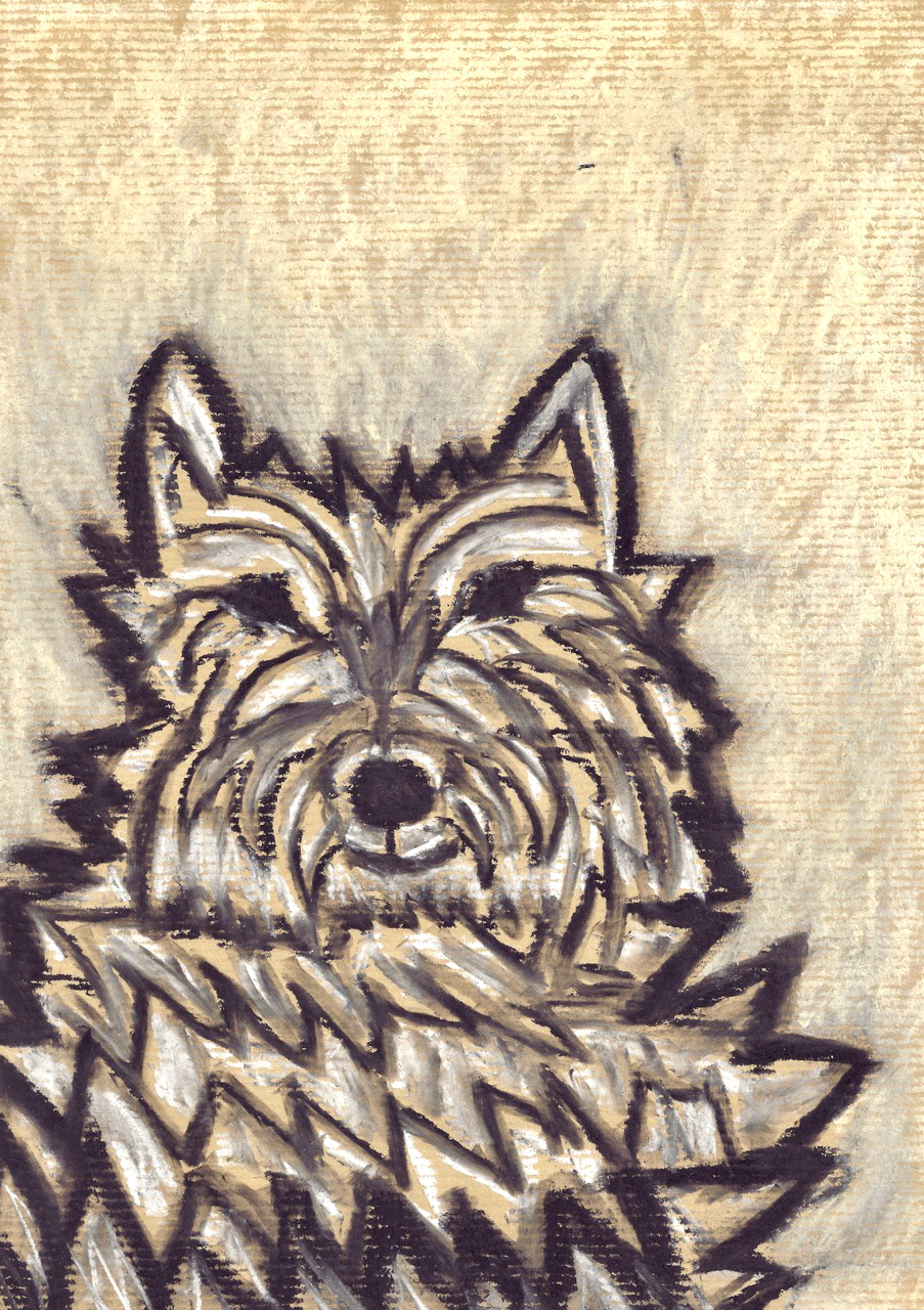Shaggy Dog - chalk pastel on paper - 29x21cm