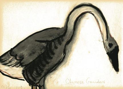 Gander - chalk pastel