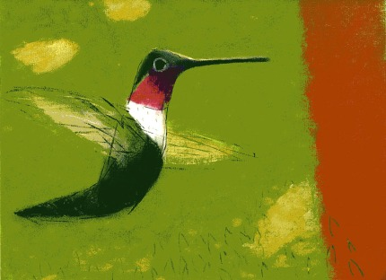 Hummingbird - chalk pastel