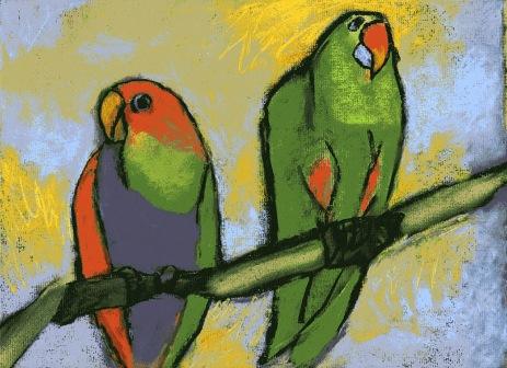 Two Parrots - chalk pastel